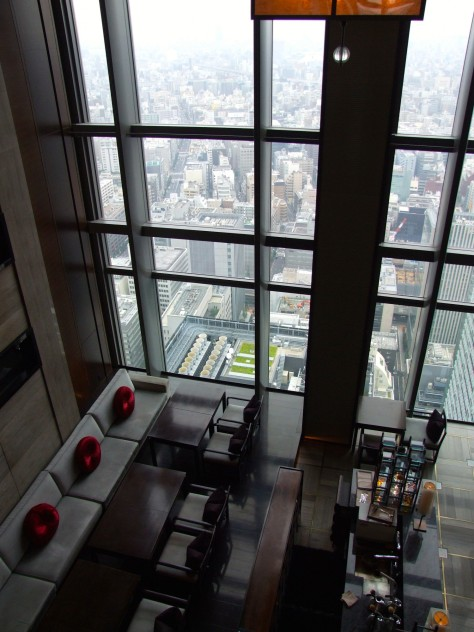 Mandarin Oriental Tokyo -View from the lobby
